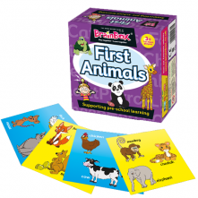 BrainBox First Animal Memory Game